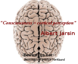 ´Consciousness = cortical perception´- Albert Jarsin - brain
