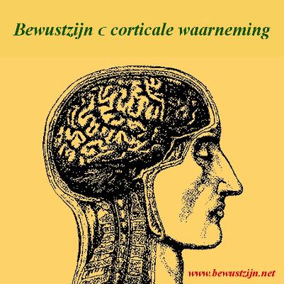 Bewustzijn ⊂ corticale waarneming